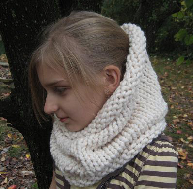 cowl neckwarmer  